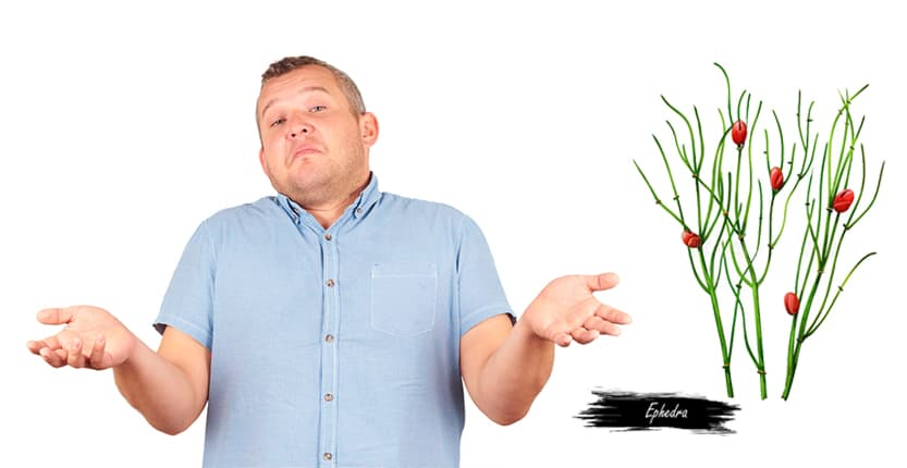 Read more about the article What is the deal with Ephedra?